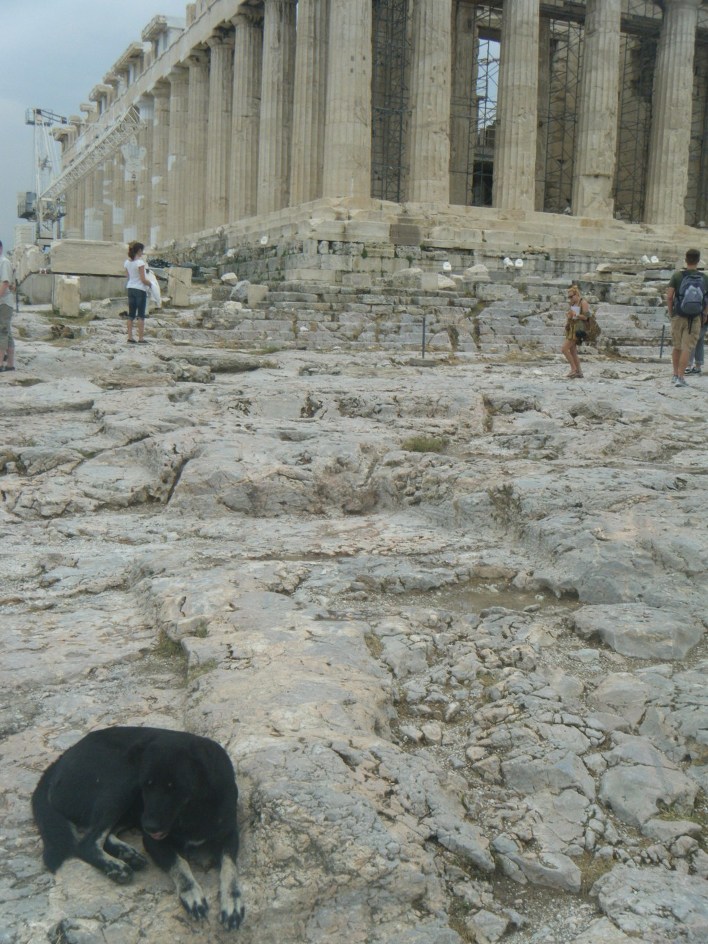 Just hanging out at the Acropolis.